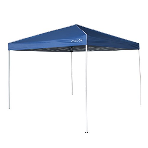 9x9 Tent Canopy - 2