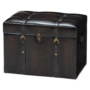 収納スツールボックス(収納付きベンチ) 合成皮革 チェスターシリーズ ダークブラウン B01CXF3YSY