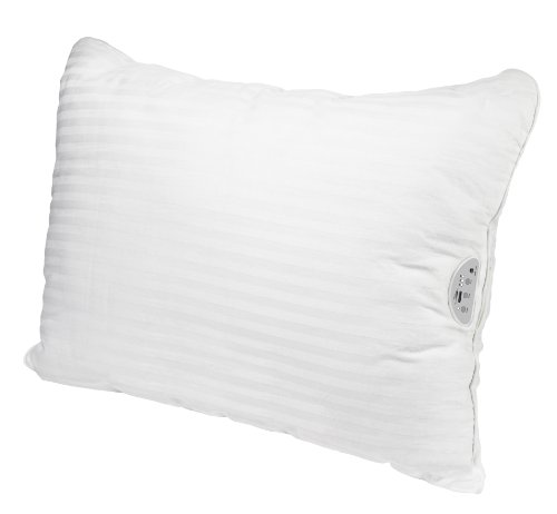 Conair P1AM Sound Therapy Pillow