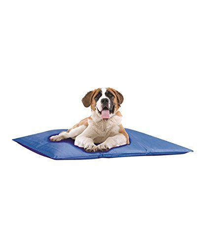 Pet Cooling Bed Large Indoor or Outdoors Pet Store Mat