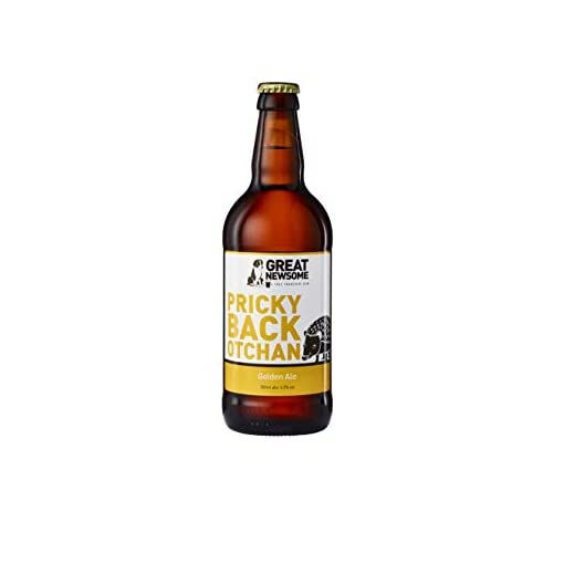 31%2BFEFf8gsL Great-Newsome-Brewery-Pub-Box-10-x-500ml-Bottles-Snacks-and-Branded-Pint-Glass