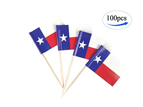 JBCD Texas Flag Texans Flags,100 Pcs Cupcake Toppers Flag, State Flag Toothpick Flag,Small Mini Stick Flags Picks Party Decoration Celebration Cocktail Food Bar Cake Flags
