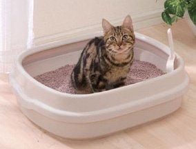 Open -Top Cat Litter Box NE-550, My Pet Supplies