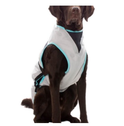 Suitical Dry Cooling Vest for your Dog - Large