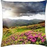 Field - Throw Pillow Cover Case (18