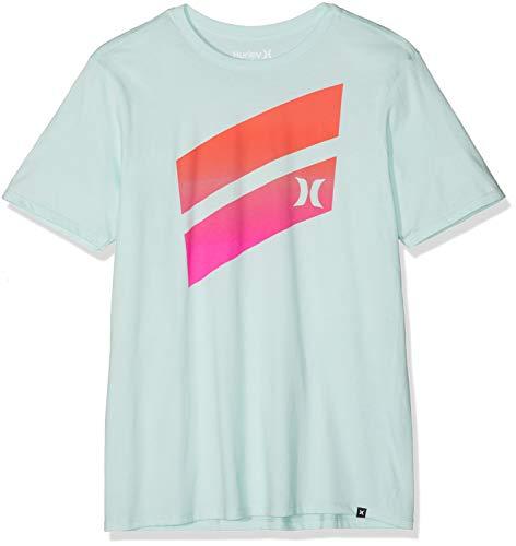 Hurley Men's Premium Icon Slash Graphic Short Sleeve Tee Shirt, Igloo M
