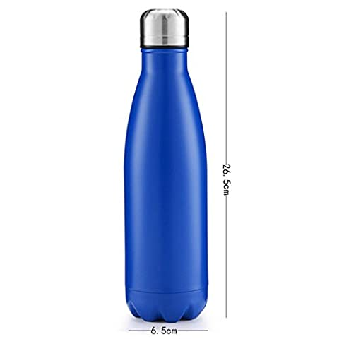 YTNT Bottle Thermos 500ml Stainless Steel Vacuum Swell Water Bottle Outdoor Sports Bicycle Travel Thermo Cup Coke/Cola (Stainless King Ounce Food Jar)