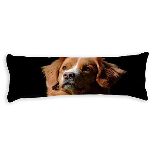 Diuangfoong Nova Scotia Duck Tolling Retriever Cotton Canvas Body Pillow Cover Decorative Pillowcase with Zippers ()