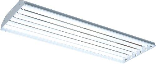 RAB Lighting RB6T8 RBay 6 by 32-Watt T8 Linear FL High Ba...