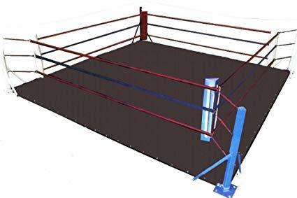 MMA Floor Ring Canvas Mat - for Wrestling,Boxing,Gymnastics & Martial Arts (Black Canvas, 20 X 20)