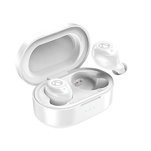 Price comparison product image BIYATE Mini Twins Bluetooth Earbud, V5.0 Stereo Wireless Bluetooth Headphones with Built-in Mic, Invisible Noise Cancelling in-Ear Earphone Car Headset Fit for iPhone Samsung and Android Phones