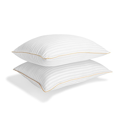 Italian Luxury Plush Gel Pillows 2100 Series (2-Pack) - Premium Quality Luxury Hotel Collection - Hypoallergenic & Dust Mite Resistant - Queen - bedroomdesign.us