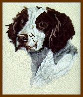 - Pegasus Originals Britttany Spaniel Counted Cross Stitch Kit (Liver & White)