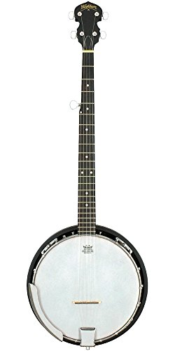 Washburn Banjo Starter Kit (Gig bag, Strap, Picks, Pitch Pipe) by Washburn