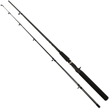 "Shimano FXC60MB2 FX 6'0"" Med Casting 2pc"