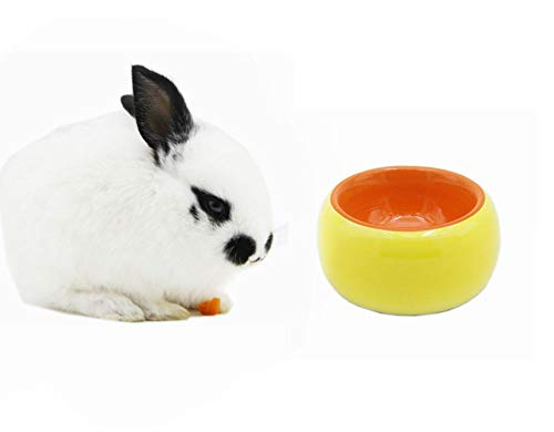 EDOBLUE No-Tip Ceramic Rabbit Food Bowl Feeder for Guinea Pig Hamster Chinchilla (Yellow)