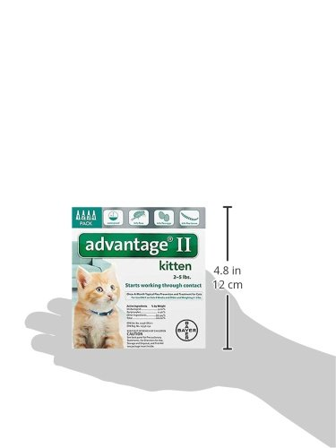 Bayer Advantage II Kitten Flea Treatment for Kittens, 2-5 lb, 4 doses by Bayer Animal Health (Image #7)