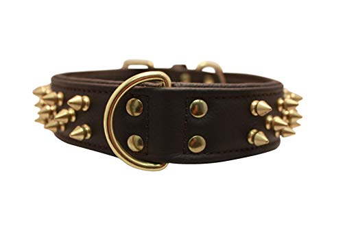 Angel, Leather Brown, Multi- Line Spiked Dog Collar, 24