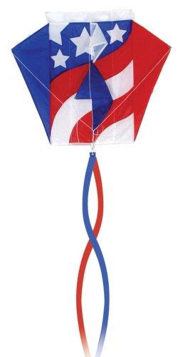 Go Fly A Kite Patriotic Parafoil Kite