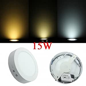 15W Round LED Panel Wall Ceiling Down Lights Mount Lamp AC 85-265V << Color::Warm White >>