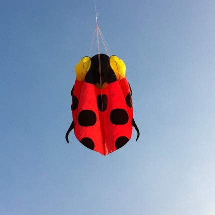 AMLJM New Arrive Outdoor Fun Sports Ladybug Kite/Animal Software Kites with Handle & Line Good Flying