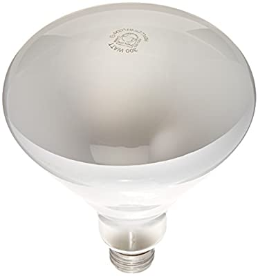 Philips 300-watt BR40 Flood Light Bulb