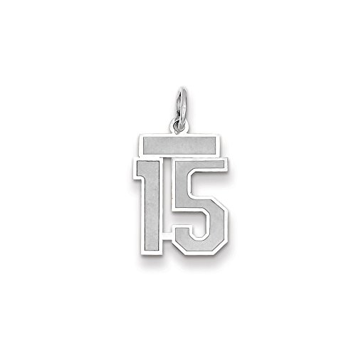 JewelrySuperMart Collection 14k White Gold Number Fifteen Charm Pendant with Satin Finish - # 15 - White Gold - Small