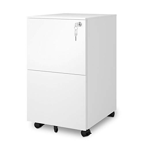 DEVAISE 2-Drawer Mobile File Cabinet with Lock, Commercial Vertical Cabinet in White