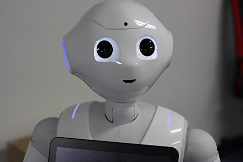 pepper the robot - 6