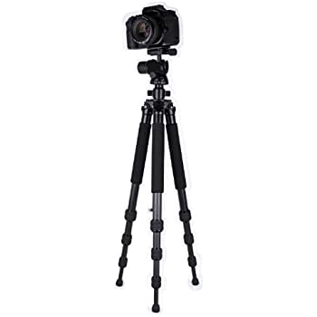 Dolica ZX600B300 Proline ZX Series 60-Inch Carbon Fiber Tripod with Ball Head