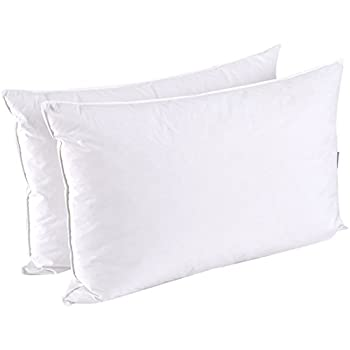 Amazon Puredown Pillow Feather Size Set Of 2 Standard Home