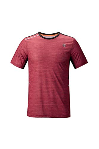 (ZITY Sportswear Men's 100% Polyester Moisture-Wicking Short-Sleeve T-Shirt Medium Wine)