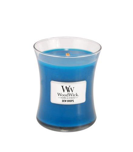 WoodWick Dew Drops Fragrance Jar Candle, Medium
