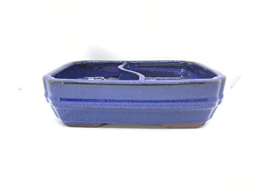 Bonsai Tree Pot Glazed with Divider 8