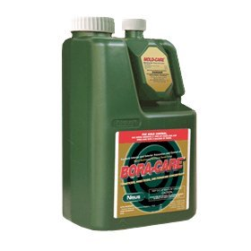 Bora-Care® with Mold-Care 1 Gallon 608794