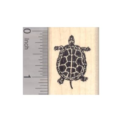 Small Turtle Rubber Stamp: Arts, Crafts & Sewing