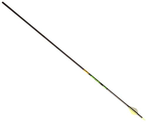 - Gold Tip Hunter XT Arrows with Raptor Vane (Pack of 6), Black, 340