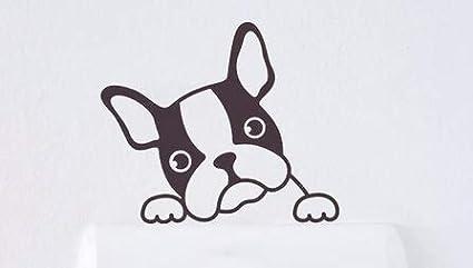 Pegatina Divertida Blanca de Bulldog francés asomándose, 8x5cms ...