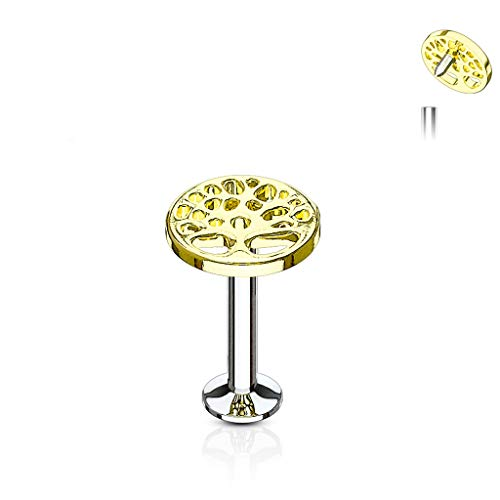 (MoBody 16G Tree of Life Labret Piercing Surgical Steel Internally Threaded Monroe Lip Ring Helix Earring (8mm (5/16