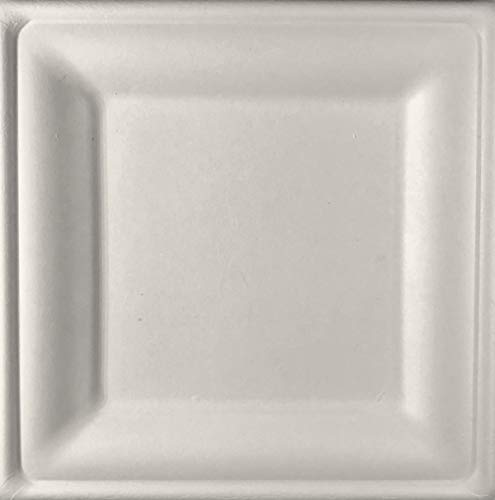 (Conscious Products [125 COUNT] 8-Inch Square Disposable Compostable Plates, made from Bagasse (biodegradable sugarcane material))