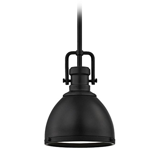 Small Black Pendant Light