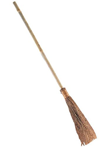 Adult Witch Broom