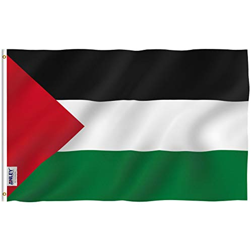Anley Fly Breeze 3x5 Foot Palestine Flag - Vivid Color and UV Fade Resistant - Canvas Header and Double Stitched -Palestinian Flags Polyester with Brass Grommets 3 X 5 Ft