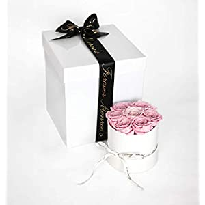 Forever Monroe's Preserved Pink Roses in a round box, Long Lasting Luxury Roses that last a year 95