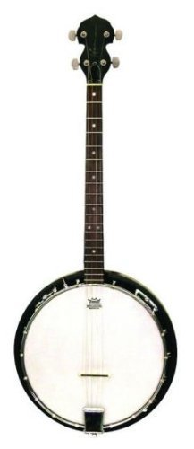 Trinity River TRTB1 4-String Tenor Banjo by Trinity River