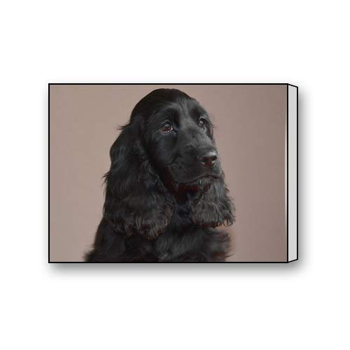 (Black Cute Cocker Spaniel Custom Canvas Print Personal Photos Print on Canvas Ready to Hang on Your Wall as a Modern Art 12