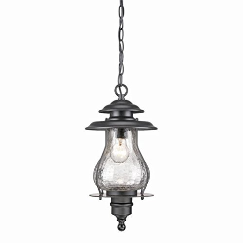 Acclaim 8206BK Blue Ridge Collection 1-Light Outdoor Light Fixture Hanging Lantern, Matte Black by Acclaim