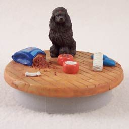 Conversation Concepts Miniature Poodle Chocolate Candle Topper Tiny One ''A Day at Home'' by Conversation Concepts