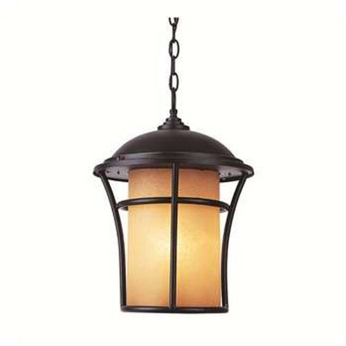 Trans Globe Lighting 5255 WB 1-Light Hanging Lantern, Weathered Bronze