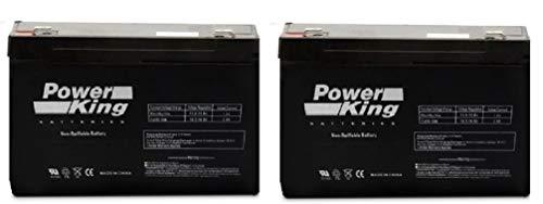Top 6V Batteries